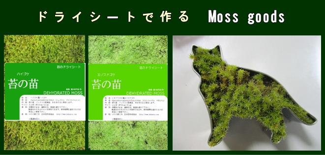 02_moss%20goods_1.jpg